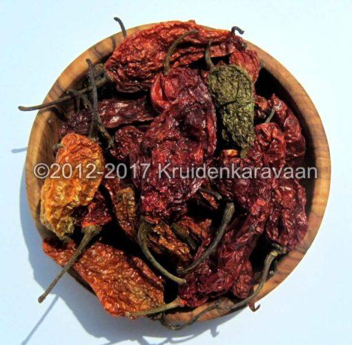 Bhut jolokia - zeer mooie rood gedroogde ghostpeppers