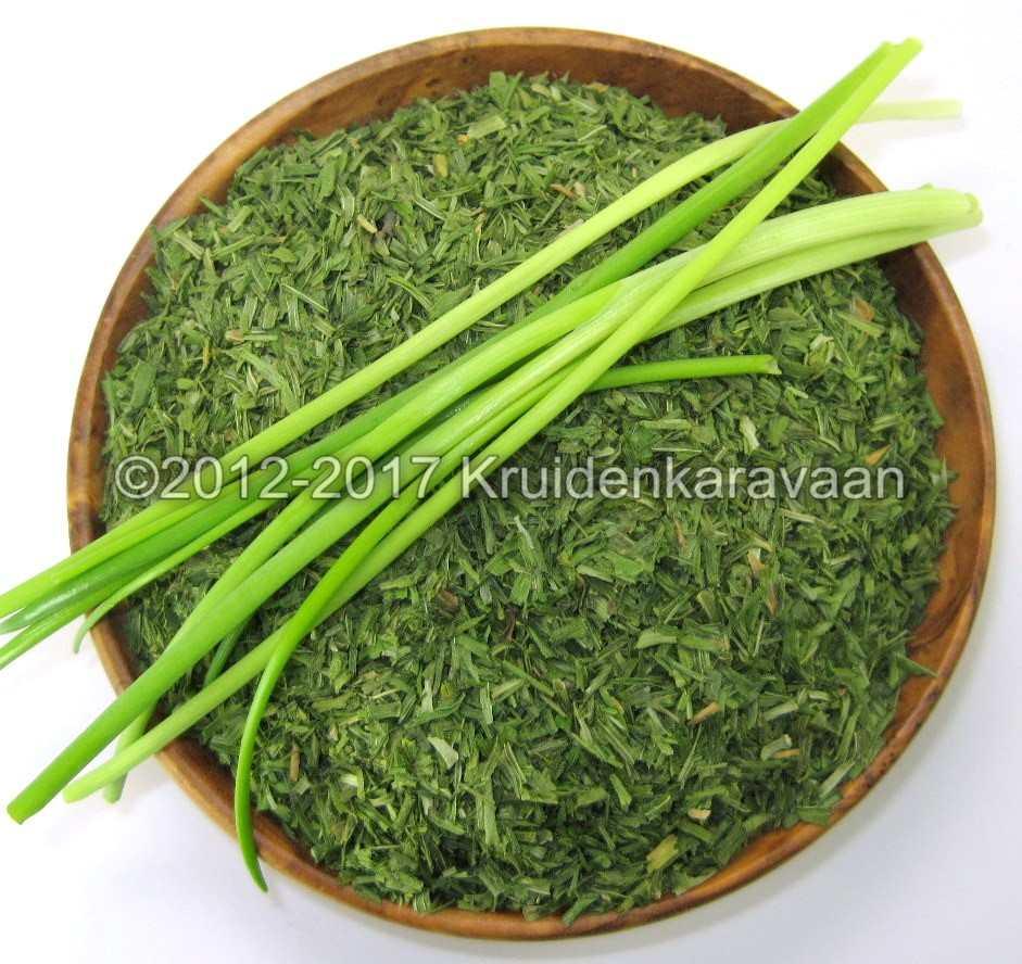 Bieslook gesneden - groene kruiden online kopen