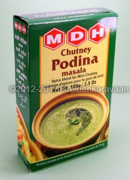 Chutney podina masala - Indiase seasoning voor munt saus online kopen