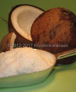 Kokosnoot snippers online kopen
