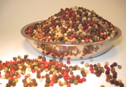 Peper vier seizoenen - gemengde peperbolletjes kopen bij kruidenkaravaan